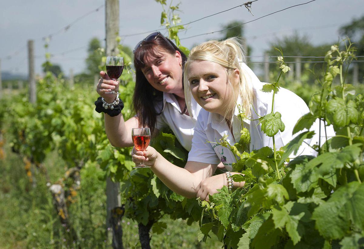 Amanda Millington with Stacey Jones at Wroxeter Roman Vineyard