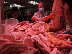 Swine fever outbreak in China prompts pork price hikes