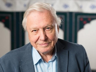 Seeing albatross feed chick plastic was heartbreaking – Sir David Attenborough