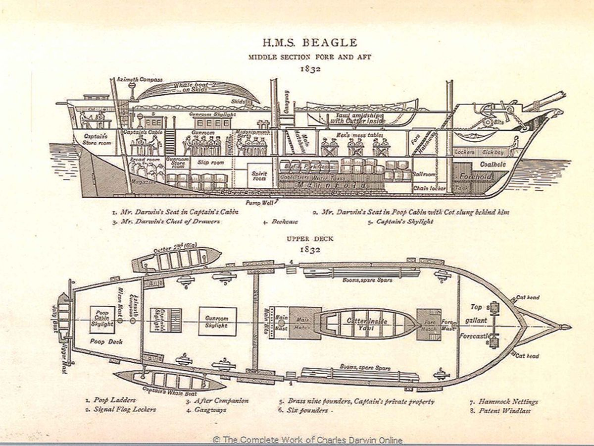 Diagram of the H.M.S. Beagle
