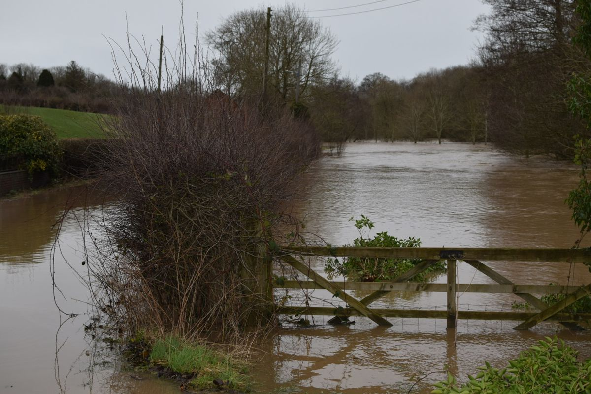 Storm Dennis flooding in Hook-a-Gate near Shrewsbury where the water was at its highest since 2007. Photo: Chris Jones