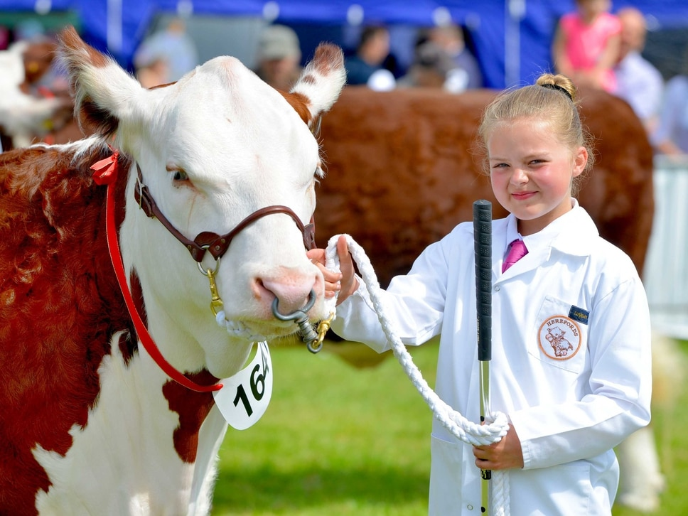 Thousands flock to Shropshire County Show - PICTURES and VIDEO