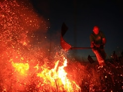 Farmers count the costs of fires in hot summer