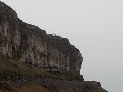 Sheep hauled up 100ft cliff after getting trapped 'while running from dog'
