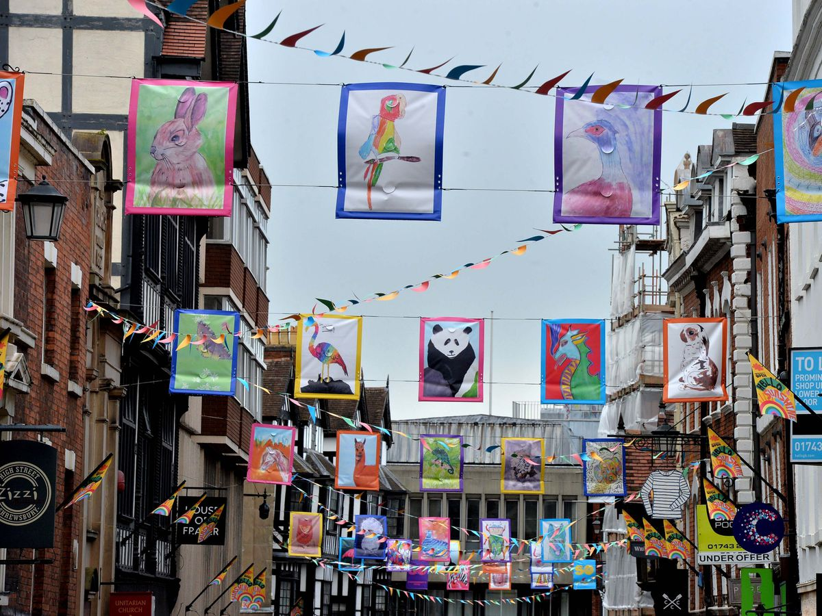 Some of the flags on Shrewsbury High Street