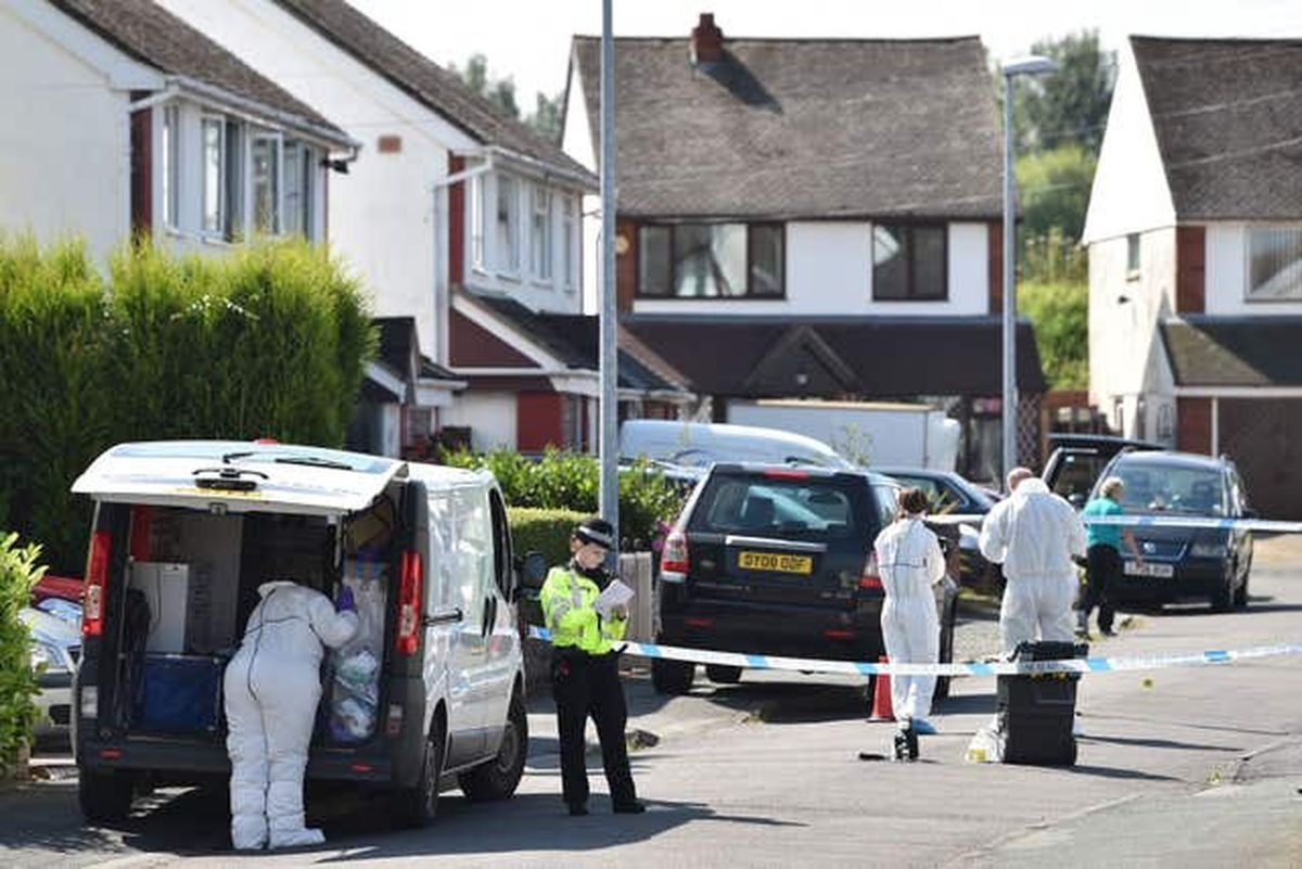 Forensic teams at the scene in Meadow Close in August 2016