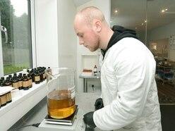 'It is quite amazing': CBD oil entering the mainstream