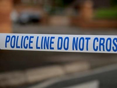 Man dies after tree falls on car