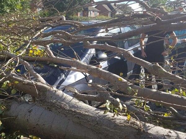 Tree crashes onto car in Shrewsbury as wind and rain to batter Shropshire again