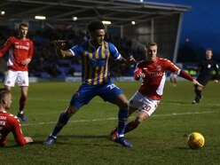 Shrewsbury Town 0 Charlton 3 - Report and pictures