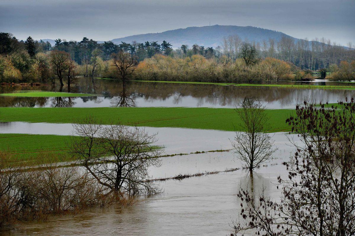 The River Severn spilt over into farm land in Shrewsbury