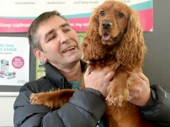 Pet patients: Behind the scenes at the PDSA
