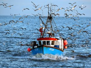 File photo dated 12/01/08 of the fishing boat Eventidereturning to Great Yarmouth after a days fishing in the North Sea. PRESS ASSOCIATION Photo. Issue date: Wednesday January 25, 2012. New rules are needed to make sure all European fishing vessels fishing outside of EU waters operate in a sustainable way, campaigners urged. The current reform of the Common Fisheries Policy, which governs the EU fleet, must make sure that vessels exploiting fish stocks as far away as the Indian Ocean and the southern Atlantic conform to the same standards as in Europe's waters. WWF-UK made the demand as it published a new study showing that commercial fishing fleets globally are expanding their range and fishing more intensively. The study identified that the area heavily affected by fishing had increased tenfold since the 1950s, to around 100 million square kilometres (38 million square miles) - a third of the world's ocean surface. More than 700 EU-flagged fishing vessels now exploit fisheries outside of Europe, including nine UK ships which fish in the Indian Ocean, in the waters of Mauritania, the Falkland Islands, Morocco and in the North West Atlantic. Fishing in foreign waters is led by Spain, whose 424 vessels make up 59% of the EU fleet operating in other countries' 'exclusive economic zones' or on the high seas. See PA story ENVIRONMENT Fish. Photo credit should read: Chris Radburn/PA Wire