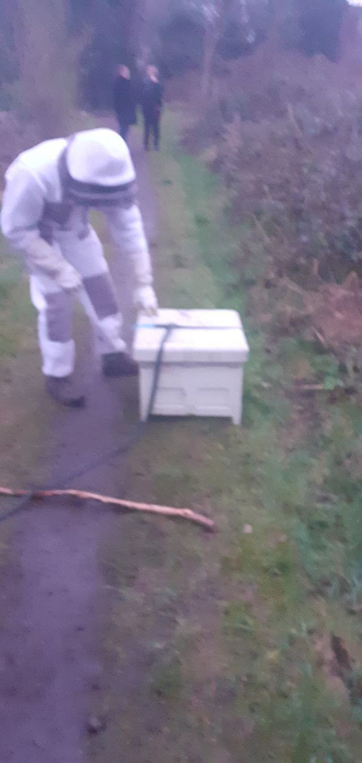 Beekeeper Daniel Minton putting the smashed hive back together