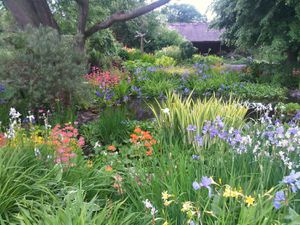 The gardens at Ruthall Manor, Ditton Priors