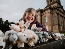 Shoppers to flock to Bridgnorth for sheep trail