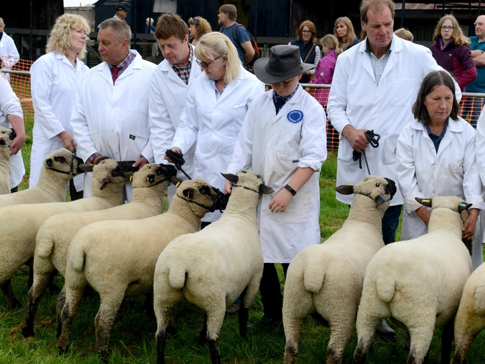 Crowds flock to Shropshire County Show - PICTURES