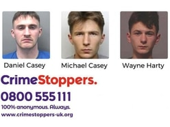 Appeal for info on trio wanted for questioning on violent burglaries