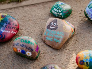Some of the decorated rocks