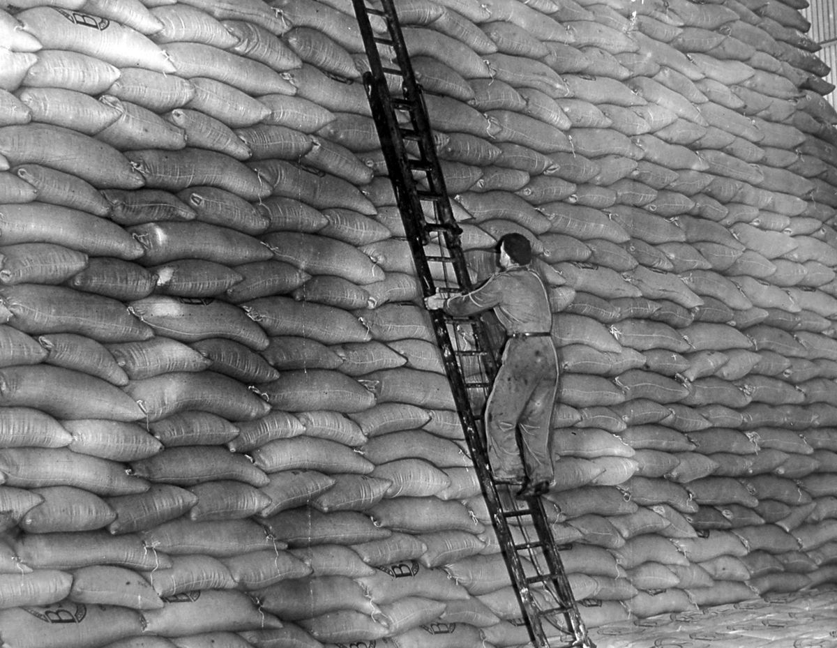 Never has getting the sack been so sweet. This workman is up a ladder in the gigantic sugar store at the Allscott sugar beet factory near Wellington on November 24, 1953. The factory, which started production in 1927, was closed in February 2007 and was demolished the following year.