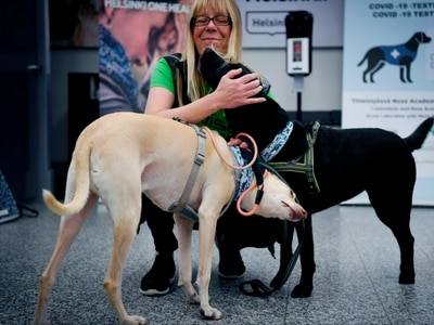 Coronavirus sniffer dogs get to work at Helsinki Airport