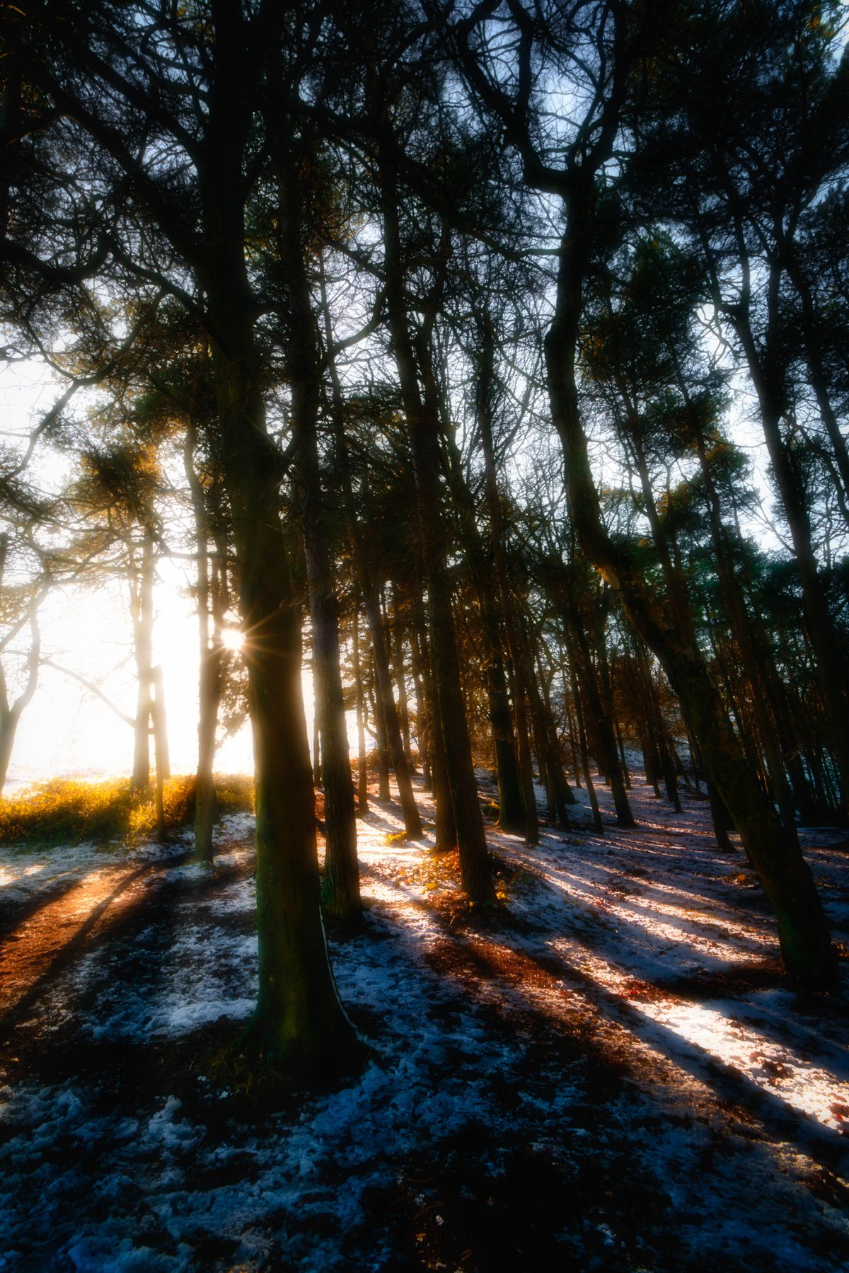 Wintry views from The Wrekin. Pic: Aaron Collyer (Shutter C Photography)