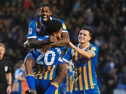 Shrewsbury Town comment: One defeat in 18 – is it fortress Meadow?