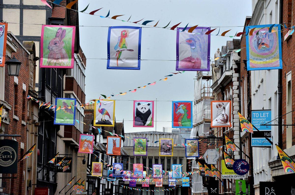 The Shrewsbury street art
