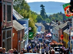 Festival co-ordinator set to be appointed for town's popular events