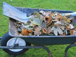Powys garden waste collections ending for the winter