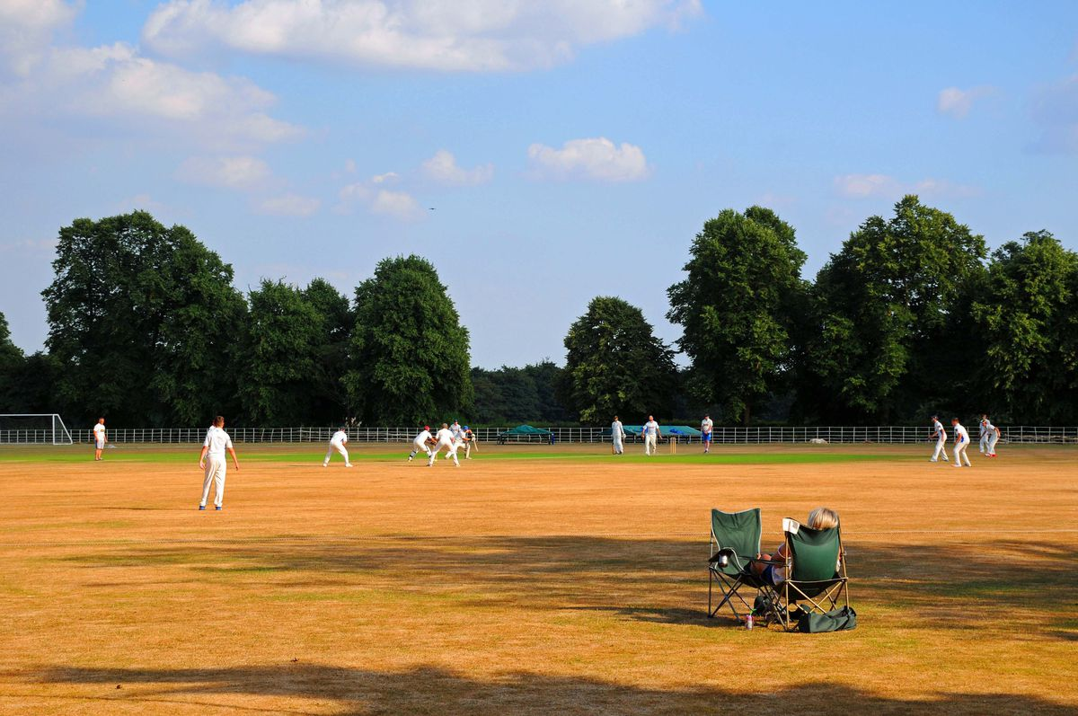 England's green and parched land: Enville cricket ground in need of some rain. Photo: Graham Gough