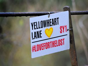SHREWS COPYRIGHT EXPRESS&STAR TIM THURSFIELD-22/02/21.A footpath off Onslow Drive, Shrewsbury, has been 'renamed' Yellowheart Lane, after yellow hearts have been placed along the route in memory of the people who have died from Covid........