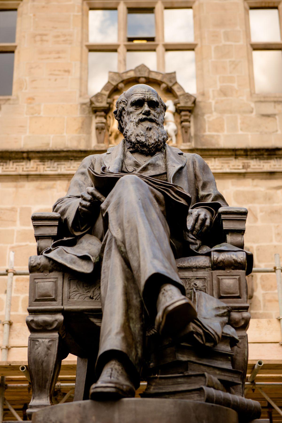 The Charles Darwin statue in Shrewsbury