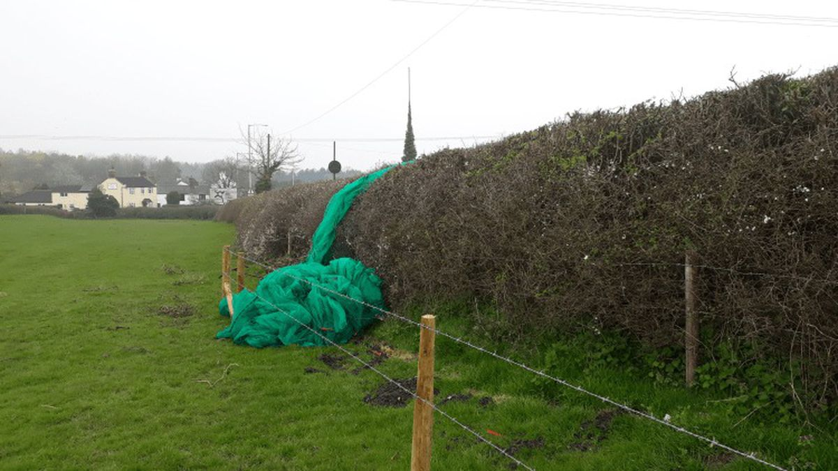 The netting has now been removed from Rocks Green. Picture: Andy Boddington