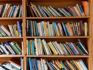 Books on a shelf (Ryan Phillips/PA)