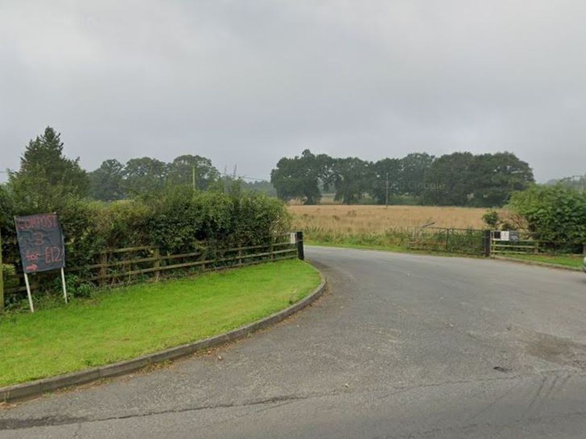 The site viewed from the existing access off Prees Road. Picture: Google Street View.