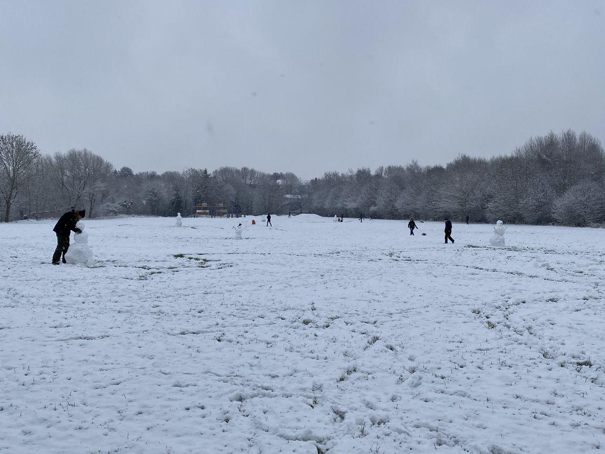 Building snowmen in Greenfields, Shrewsbury. Photo: @maxicheddar