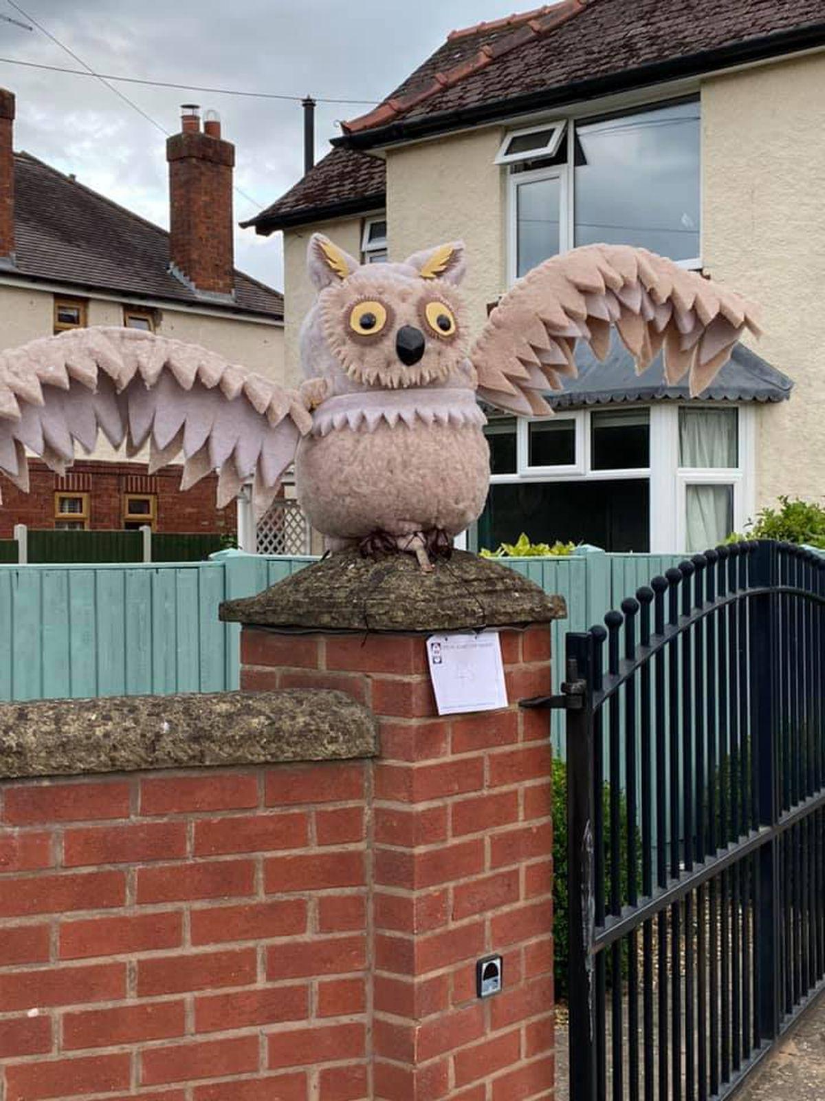 White Haynes ( The owl )