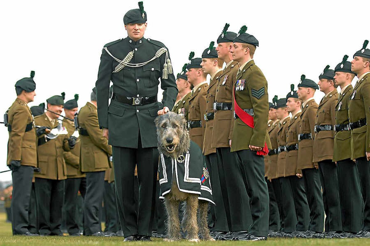 Royal Irish Regiment on parade for St Patrick's Day