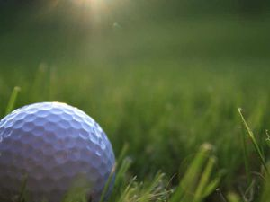 Shrewsbury pitch & putt site sold to developers