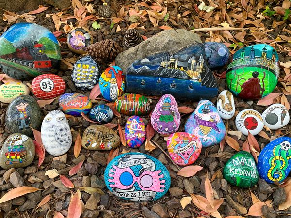 Kristen Newman's Harry Potter rock garden, with stones painted in a Harry Potter theme