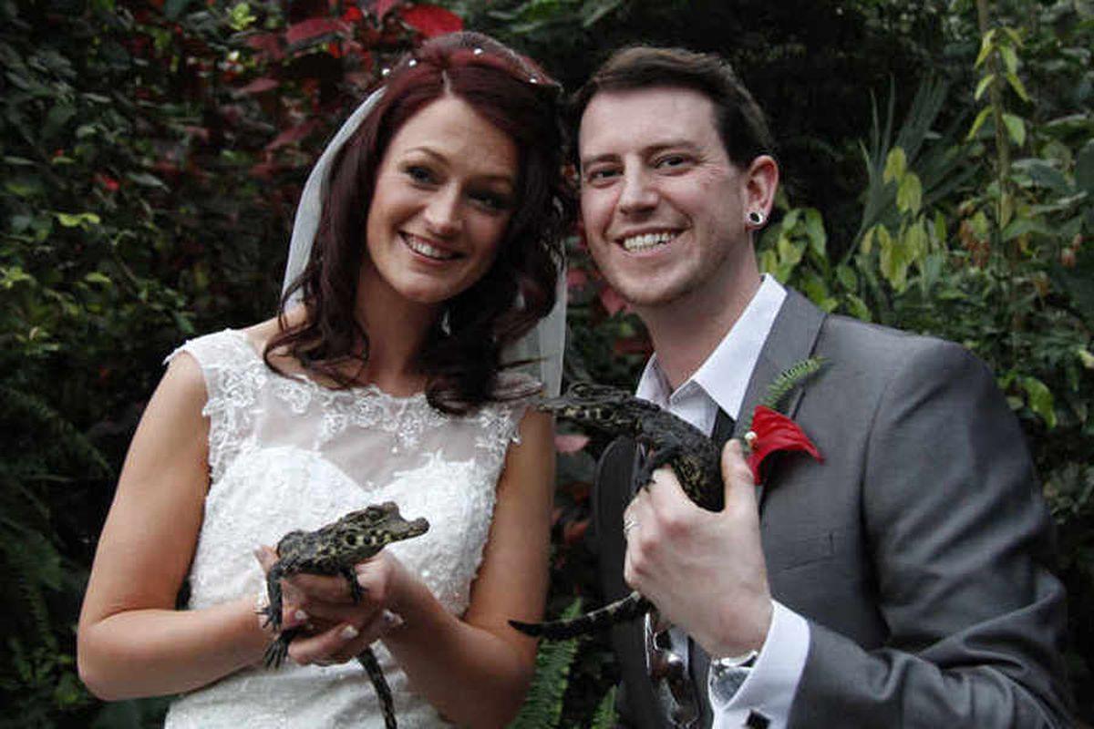 Wild wedding for Shropshire reality TV couple