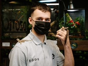 Ed Scott, 18, from Telford – with a Bearded Dragon and a snake – has set up his own exotic pet shop in Oakengates called Edzotics.
