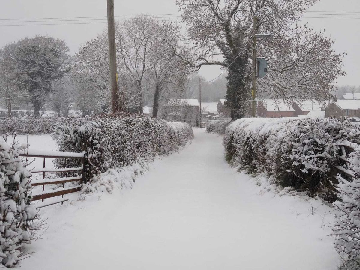 Snow in Treflach, near Oswestry, which had around four inches by 9am on Sunday