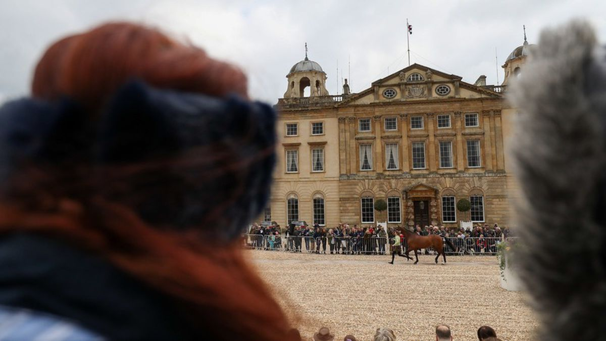 Rider suffered traumatic brain injury in fall at Badminton Horse Trials