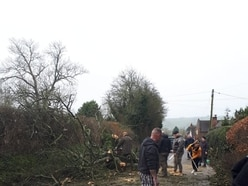 Storm Ciara: Buildings damaged and roads blocked as trees are brought down across Shropshire