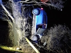 Suspected drink driver lands car in tree near Shrewsbury