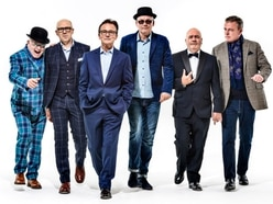 Oh what fun they've had: Madness talk ahead of Wolverhampton Racecourse show
