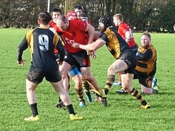 Rugby Union: Telford Hornets stung by Ludlow
