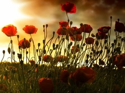Shropshire remembers the fallen: List of Remembrance Day services
